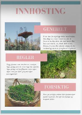 Innhøstingstips